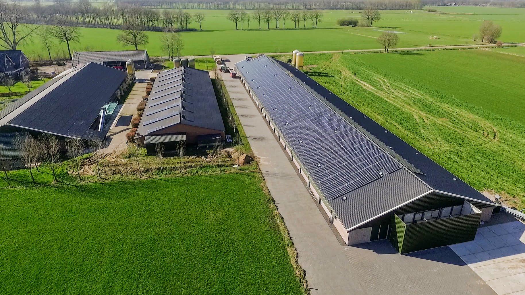 Zon op bedrijfsdak bij Wijlhuizen in Holten - financiering via ZonnepanelenDelen